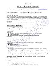 Assistant Manager Resume Format It Page 2 Project Professional