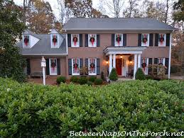 wreaths on exterior windows for