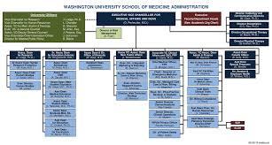 Washington University School Of Medicine Administration