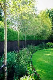 Green Tree Garden Design Ltd Garden Design Ideas Pictures L Homify Tree Planting