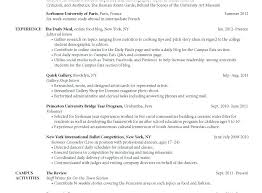 Sample Picture Of A Resume 30 Best Examples Of What Skills To Put