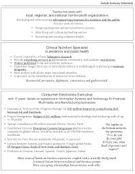 Sample Resume Summary Statements Examples Summary A Resume Examples