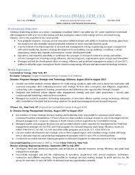 Cv Consulting 46 Detail Management Resume Summary Wl A114603 Resume Samples