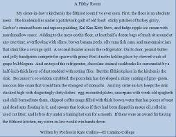 paragraph descriptive essay college paper academic service paragraph descriptive essay