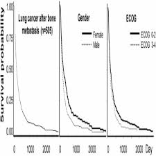 Stage 4 Lung Cancer Survival Rate Stage 4 Bone Cancer Survival Rate Prognostic Score For Life