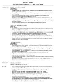 Vendor Manager Resume Samples Velvet Jobs