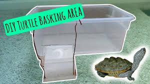 turtle basking area diy and easy