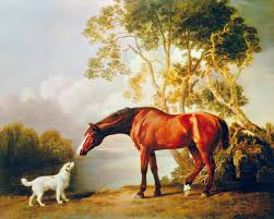 bay horse and white dog art print by george stubbs