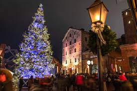 Risultati immagini per toronto christmas tree 2019 images