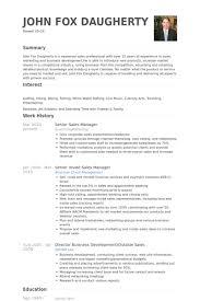 Sample Sales Manager Resume 2941
