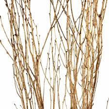 Classy Images Of Tree Branches Decoration For Your Inspiration : Foxy Image  Of Gold Painted Dried