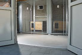 flooring options for kennels provide great living areas for these kennel residents