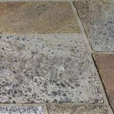 patio black spot remover removing