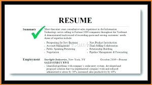 Summary Examples For Resume Unique Examples Of Resume Summary Resume Resume Summary Statement Examples