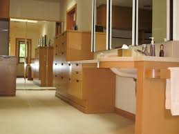 wheelchair accessible bathroom sinks. Handicap Accessible Bathroom Designs Design Wheelchair Sinks