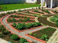 Сад/Огород: лучшие изображения (172) | Огород, Сад и ...