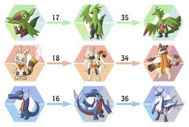 What Does Torkoal Evolve To
