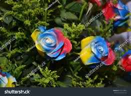 Flag Roses Venezuela Colombia Ecuador Stock Photo (Edit Now) 372173884