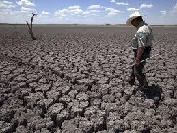web essay politics obscures global warming debate