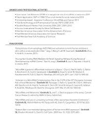 Executive Summary In Resume Gorgeous Sample Executive Summary For Resume Inspiration Toys R Us Resume