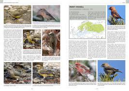 Passerines Western Palearctic Medien Thema Natur - Zum Svensson Handbook Birds Shirihai Of