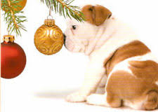 Bulldog Christmas Cards | eBay