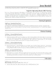 Cleaner Resume Template Office Cleaner Cv Template U2013