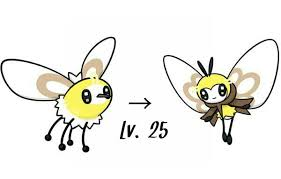 Cutiefly Evolution Chart Pokemon Pokemon Evolution Online Charts Collection
