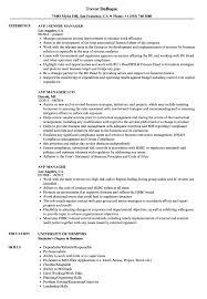 Avp Manager Resume Samples Velvet Jobs