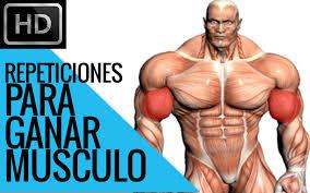 difee número de repeticiones para ganar fuerza y musculatura you