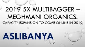 2019 5x Multibager Meghmani Organics
