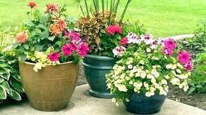 flower pot ideas for winter full size of outdoor flower pots container ideas for in winter