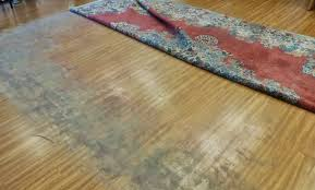 bring in your dusty rugs for a full professional deep cleaning today or schedule your pick up by calling us at 310 860 0460