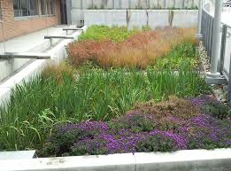 Small Picture Garden Design Garden Design with Water Sensitive Urban Design