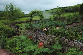 Small Picture Ideas for Starting a Kitchen Garden Garden Design