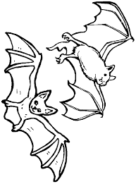 nocturnal animals coloring pages.  Coloring Nocturnal Animals Coloring Pages  Bats Flying Inside I