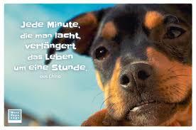 Jede Minute Die Man Lacht Verlängert Das Leben Um Eine Stunde