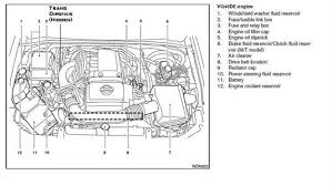 nissan transmission diagram questions answers pictures nissan frontier and my manual does not show me where my transmission dipstick or the spark plugs are located your nissan engine diagram dipstck