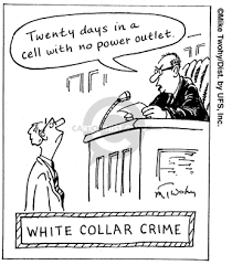 Image result for white collar crimes