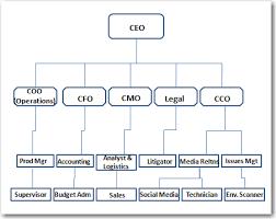 Cmo Org Chart Organizational Structure