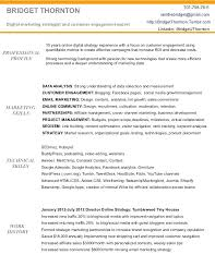 Digital Strategist Resume Digital Marketing Resume Of Template Manager Jaxos Co