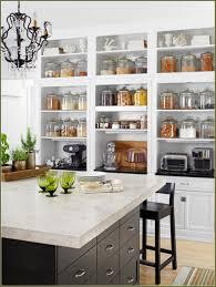 Open Kitchen Concept Kitchen Open Kitchen Cabinet Ideas Fresh Idea To Design Your