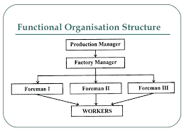 Company Structure Diagram Template Company Structure Diagram Template Mediaschool Info