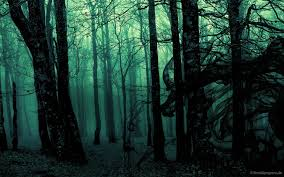 Download Dark Forest Backgrounds Is Cool Wallpapers