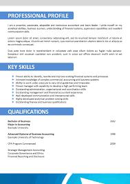 Creating Resume Online Resume Template