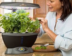 hydroponic herb garden. Hydroponic Herb Garden O