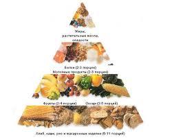 питание реферат Здоровое питание реферат