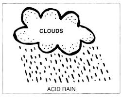 acid rain research paper sample for   acid rain research paper