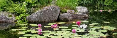 how to make a garden pond