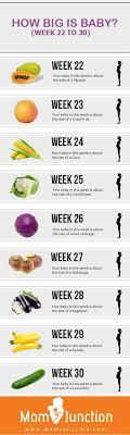Breast Size Chart Fruit Breast Size Chart Fruit 20697 Metabluedb